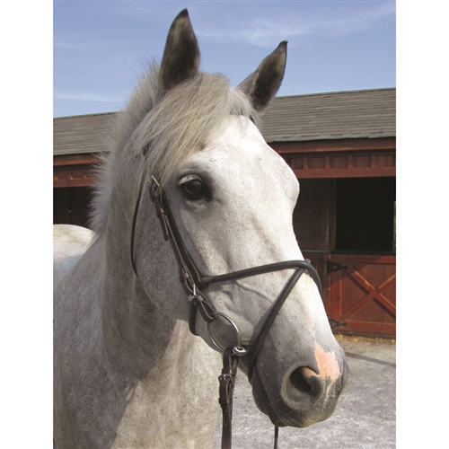Nunn Finer Rubber Figure 8 Noseband