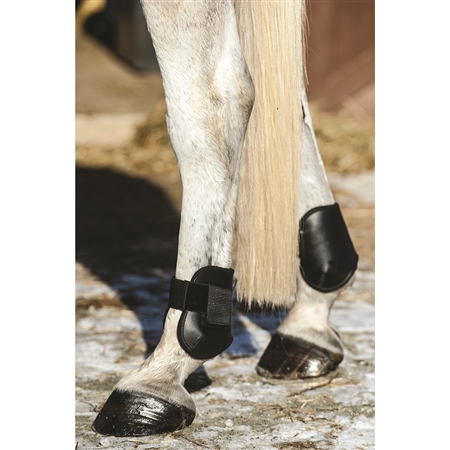 Hampa Fetlock Boot