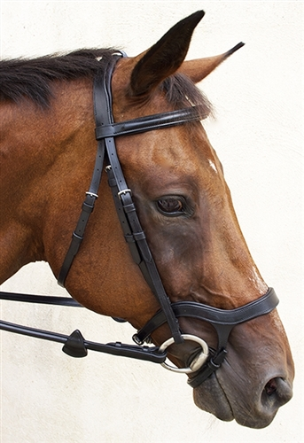 Nunn Finer Innovativo English Bridle in Havana or Black