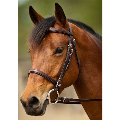 Nunn Finer� Event Bridle